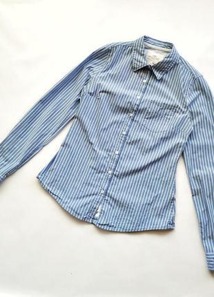 Голубая хлопковая рубашка в белую полоску h&m logg