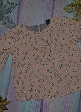 Рубашка блуза 2 года