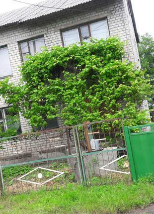 Продаётся двух этажный коттедж  +участок и огород