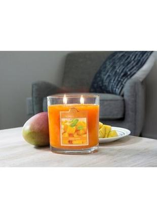 Mango salsa ароматическая свеча от colonial candle сша