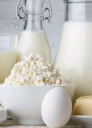 Продам домашнє молоко, творог, сметану, вершки, масло, яйця.