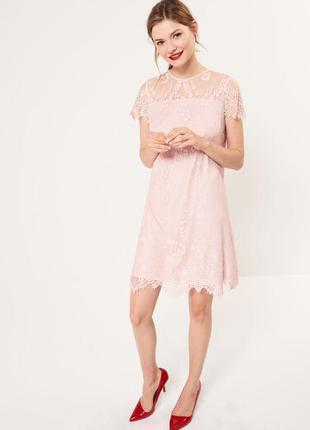 Платье кружевное пудрового цвета мохито