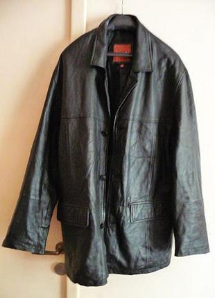 Большая кожаная мужская куртка amici. лот 613