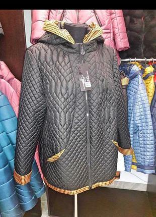 Куртка демісезон, ціна закупки!