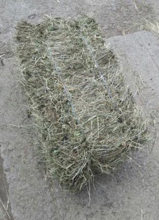 Сено, тюки луговой травы большие , заказывайте