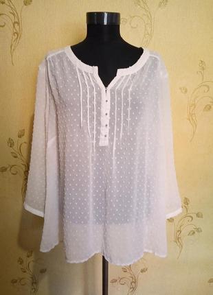 Белая блуза большой размер 24