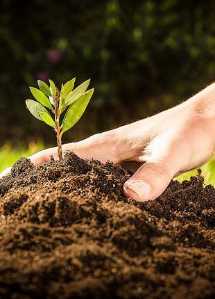 Чернозем в мешках для огорода, газона,сада, грунт, земля в мешках