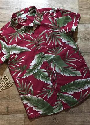 Летняя гавайская бордовая рубашка, тропическая рубашка ,на 10 ...