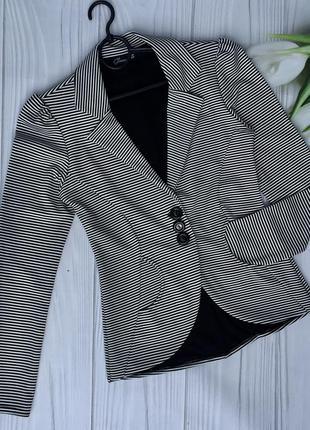 Стильный пиджак в полоску glamour babe