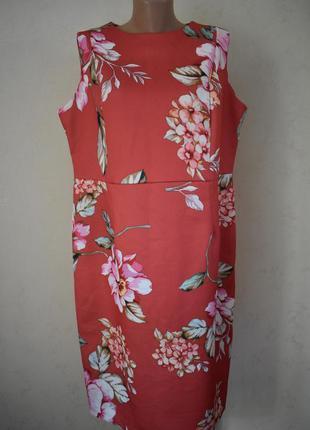 Красивое платье с принтом большого размера bonmarche