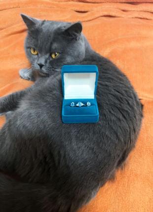 Комплект серьги + кольцо 585 проба. белое золото