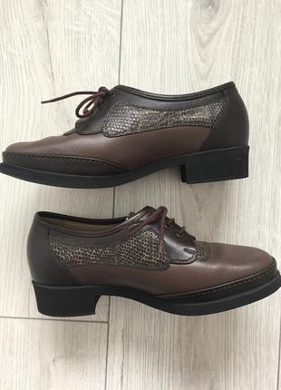 Ботинки, полусапожки, модная обувь, коричневі черевики.