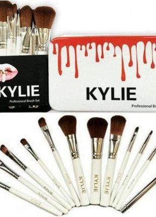 Профессиональный набор кистей для макияжа 12 штук kylie