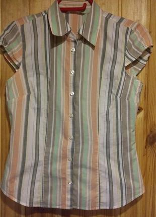 Летняя рубашка в полоску с коротким рукавом