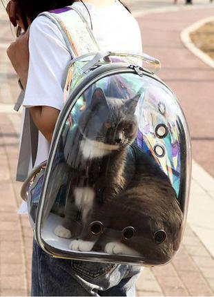 Рюкзак Переноска для животных кошек и собак