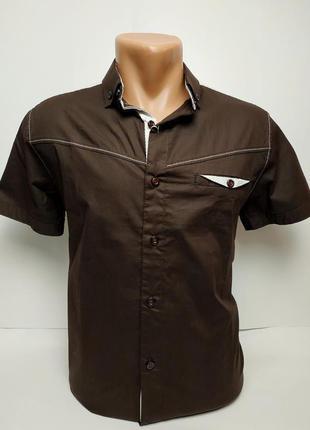 Стильные приталенные рубашки, отлично ложатся по фигуре.