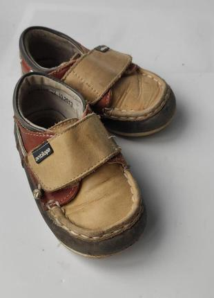 Туфли  кожаные antilopa 23 размер