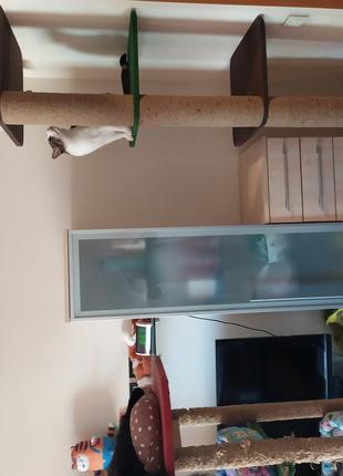 Когтеточка стойка распорка для кошек до потолка.