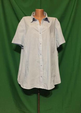 Рубашка в полоску большего размера