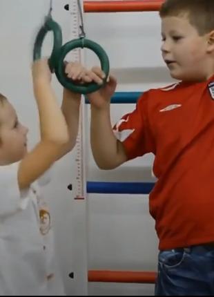 Детская спортивная стенка. Шведская стенка, канат, кольца