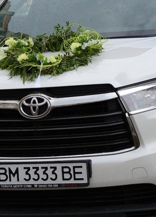 Авто на свадьбу,свадебный кортеж-Тойота Хайлендер+Тойота Камри