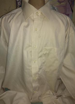 Мужская рубашка/батал