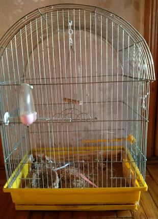Клетка для домашней птицы