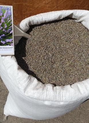 Лаванда соцветие 100 грамм