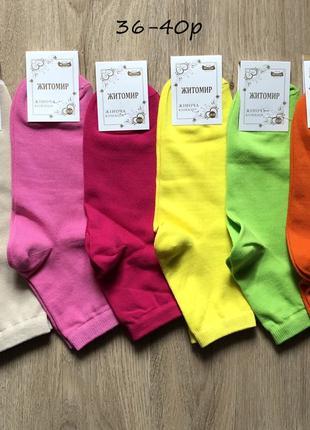 Женские носки Житомир 36-40 размер