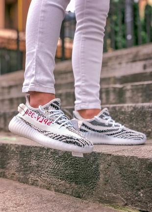 Стильные кроссовки adidas yeezy 350 zebra