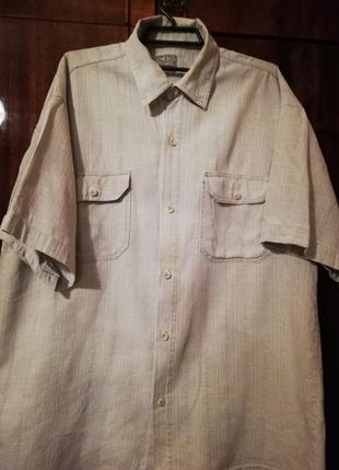 Рубашка с коротким рукавом xxl