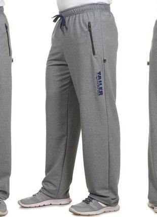 Мужские спортивные штаны из турецкого трикотажа (208б)