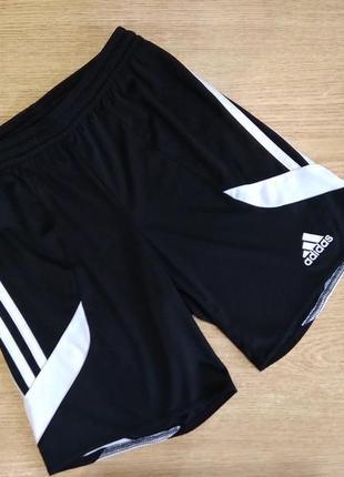 Шорты adidas climalite спортивные