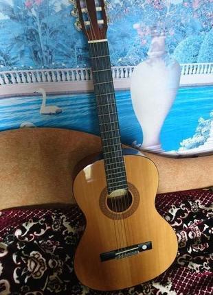 Гитара акустическая Tenson с чехлом