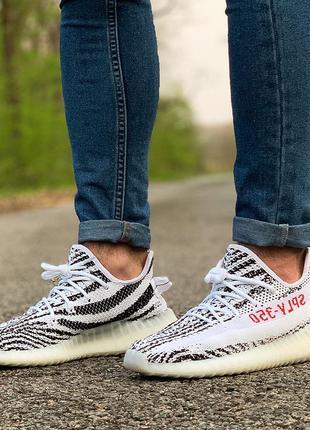 Кросівки adidas yeezy boost 350 v2 zebra  кроссовки