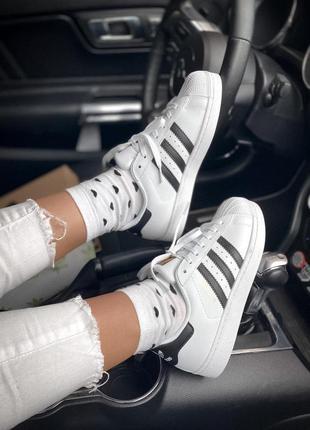 Кроссовки adidas  superstar black/white кросівки кеди