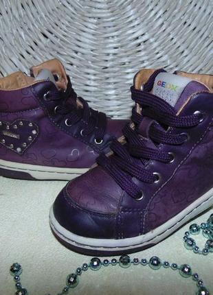 Модные ботинки geox 25р,ст 15,4 см.mега выбор обуви и одежды