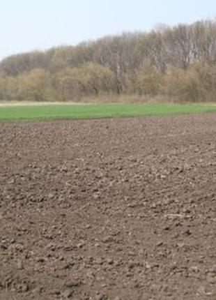 Продам земельные паи 7,5 гектар в Малинском р-не!