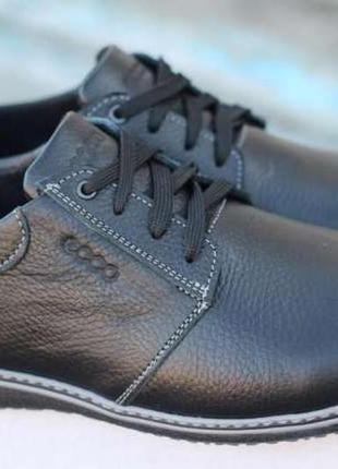 Мужские туфли (чоловічі туфлі) ecco