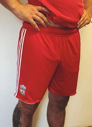 Мужские шорты adidas climacool liverpool ( адидас лрр)