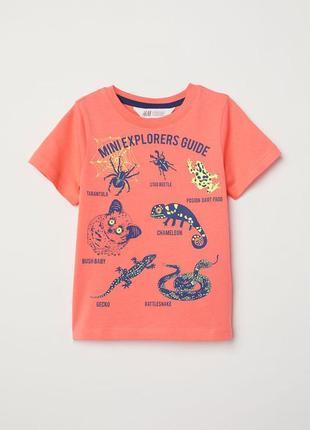 Стильная футболка на мальчика h&m новая коллекция