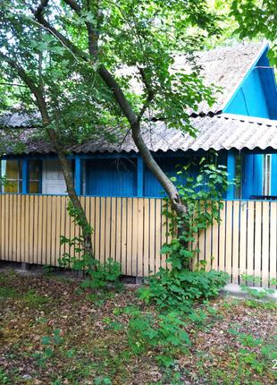 Аренда домиков на берегу реки Рось