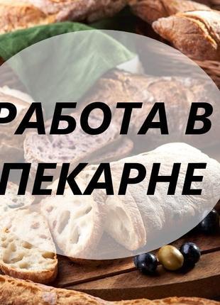 Требуется работник в пекарню в Польше