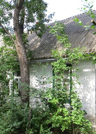 Дом Киевская область Иванковский район Зарудье