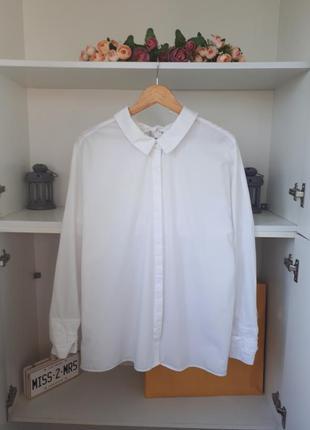 Хлопковая рубашка длинный рукав zara
