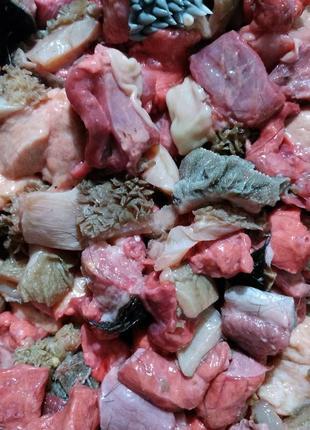 Мясо и субпродукты  для собак