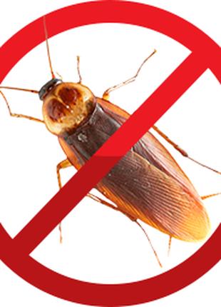 Профессиональное уничтожение тараканов.