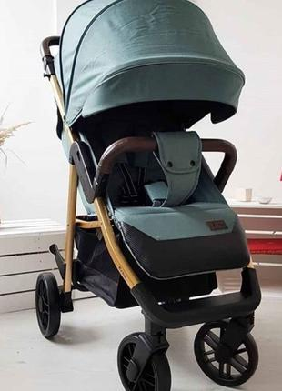 Прогулочная коляска книжка CARRELLO Echo Каррелло Бесплатная д...