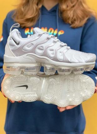 Nike air vapormax tn wolf grey
