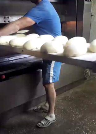 Печь пекарная (ротационная, подовая), кондитерская конвекционная
